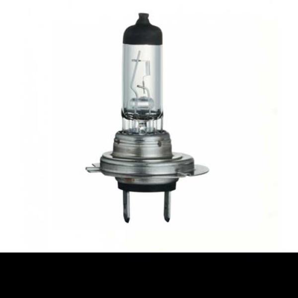 Autolampen H7